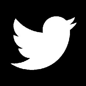 Twitter accordion icon